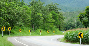 Asphalt road curved side of cornfield with arrow signs. Royalty Free Stock Photos