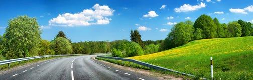 Asphalt road and dandelion field Royalty Free Stock Images