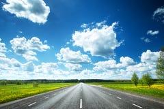 Asphalt road and dandelion field Royalty Free Stock Image