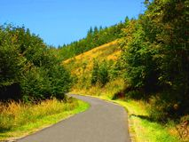 Asphalt road in deciduous forest in mountains Stock Images