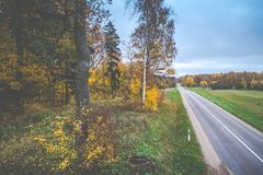 Asphalt road in fall forest royalty free stock image