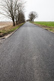 The asphalt road. Between fields Royalty Free Stock Images
