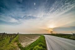 Asphalt road through fields Royalty Free Stock Photos