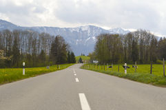 Asphalt Road between Fields in the Swiss Alps Royalty Free Stock Image