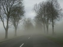 Asphalt road in the fog royalty free stock photo