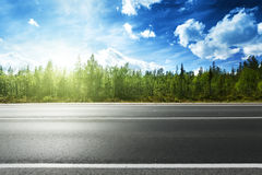 Asphalt road and forest Royalty Free Stock Photos