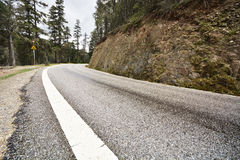 Asphalt road in forest Royalty Free Stock Image