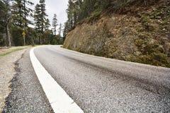 Asphalt road in forest. Asphalt road in deep forest Royalty Free Stock Image