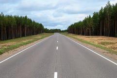 Asphalt road through the forest Stock Photo