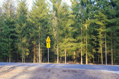 Asphalt road and forest Royalty Free Stock Photo