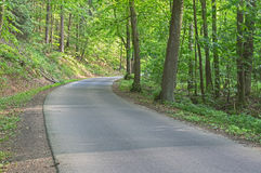 Asphalt road through the forest. The photo shows a narrow, asphalt, provincial, winding road. It leads through deciduous forest. It& x27;s summer. There are Stock Images