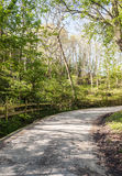 Asphalt road in the forests of Cantabria Royalty Free Stock Photo