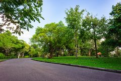 Asphalt road go to greenness forest. And blue sky day in public park at Bangkok, Thailand Royalty Free Stock Photography