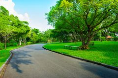 Asphalt road go to greenness forest and blue sky. Day in public park at Bangkok, Thailand Stock Photography