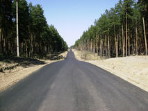 Asphalt road goes into the distance Royalty Free Stock Photo