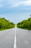 Asphalt road, goes into the distance. Green trees are on both sides. Royalty Free Stock Photo