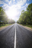 Asphalt road in green forest. Stock Photography