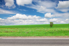 Asphalt road, green grass field and sky with clouds Royalty Free Stock Photography