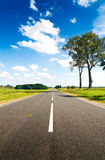 Asphalt road in green meadow Royalty Free Stock Images