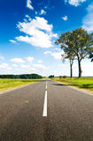 Asphalt road in green meadow Stock Image