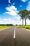 Asphalt road in green meadow Stock Image