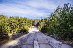 Asphalt road through the green pine forest  and clouds on blue sky Stock Photography