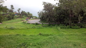 Asphalt road in green surroundings Stock Images