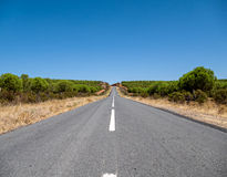 Asphalt Road on Hill Royalty Free Stock Photography