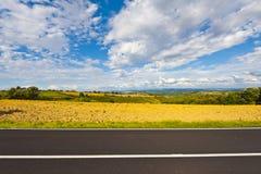 Asphalt Road inTuscany Fotografia Stock Libera da Diritti