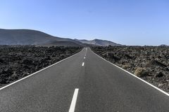 Asphalt road among lava poles on Lanzarote Canary Islands.  Stock Image