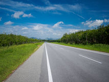 Asphalt road from Malaysia to Thailand Royalty Free Stock Photo