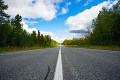 Asphalt road with markings in  forest . Stock Photo