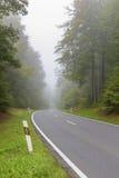 Asphalt road in misty forest Royalty Free Stock Images