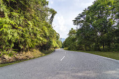Asphalt road in mountain. Tropical forest hill Royalty Free Stock Images