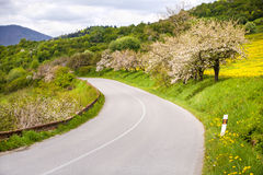 Asphalt road in mountains Royalty Free Stock Image