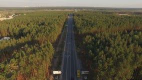 Asphalt Road na floresta do pinho com carros Vídeo aéreo vídeos de arquivo