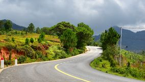 Asphalt road with natural tree in Lang Biang National Park Royalty Free Stock Photo