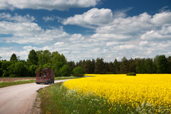 Asphalt road near a field. With a truck Stock Images