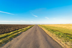 Asphalt road passes through the field and going beyond the horizon Stock Images
