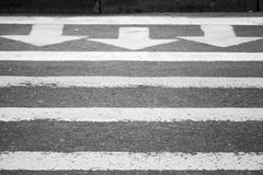 Asphalt road, pedestrian crossing road marking. Three white arrows and lines on dark gray asphalt road, pedestrian crossing road marking Stock Image