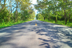Asphalt road perspective to forest Royalty Free Stock Image