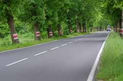 Asphalt road. Royalty Free Stock Images