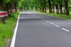 Asphalt road. Stock Photography
