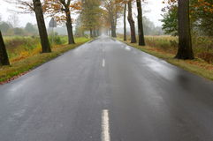 Asphalt road. Stock Photo
