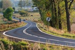 Asphalt road. Royalty Free Stock Photo