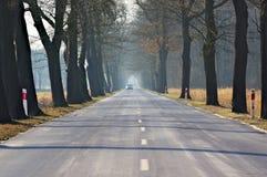 Asphalt road. Royalty Free Stock Image