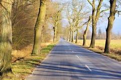 Asphalt road. Royalty Free Stock Photography