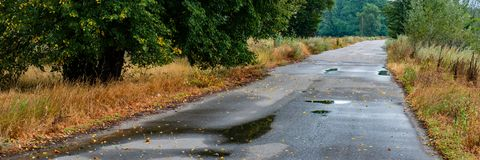 Asphalt road in the puddles and fallen leaves. Web banner royalty free stock photography