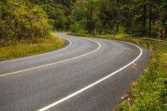 Asphalt road in rainforest Stock Images