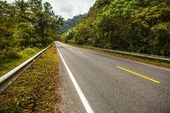 Asphalt road in rainforest Stock Photography